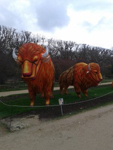 Photo-0204 Bisons MNHN jardin