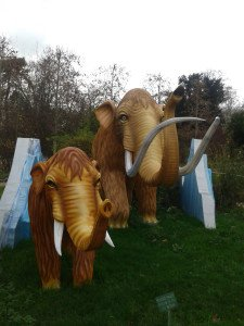 Photo-0213 mammouth et éléphant Jardin des Plantes MNHN Paris